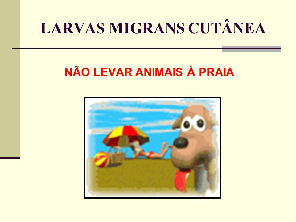 LARVAS MIGRANS CUTÂNEA