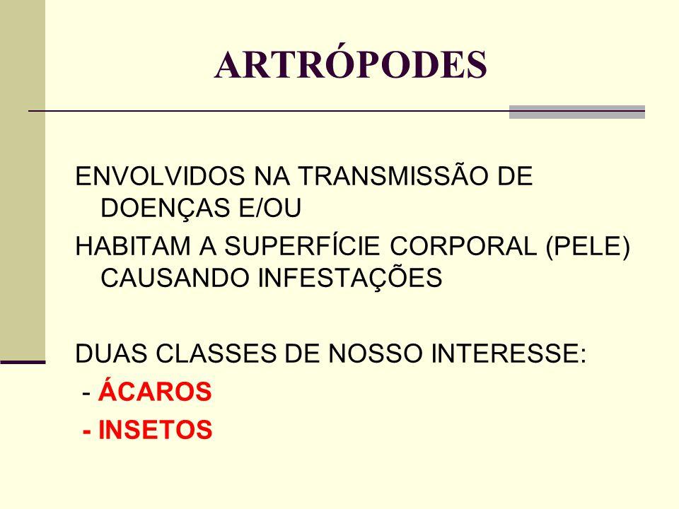 ARTRÓPODES ENVOLVIDOS NA TRANSMISSÃO DE DOENÇAS E/OU