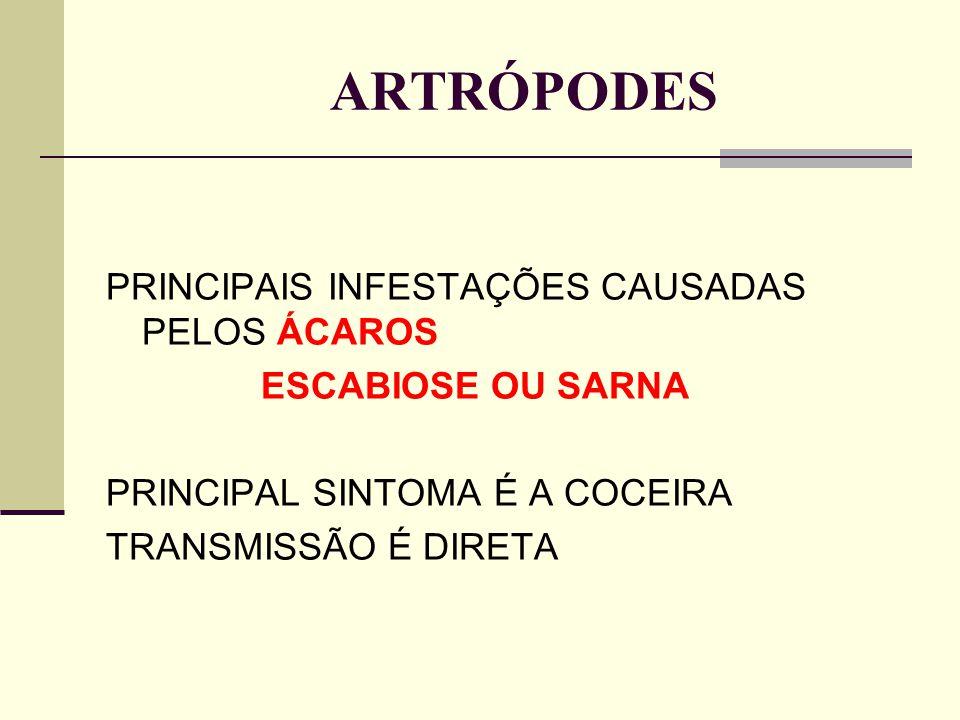 ARTRÓPODES PRINCIPAIS INFESTAÇÕES CAUSADAS PELOS ÁCAROS