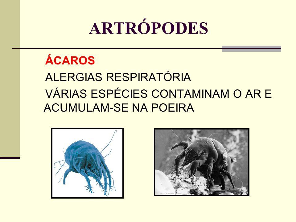 ARTRÓPODES ÁCAROS ALERGIAS RESPIRATÓRIA