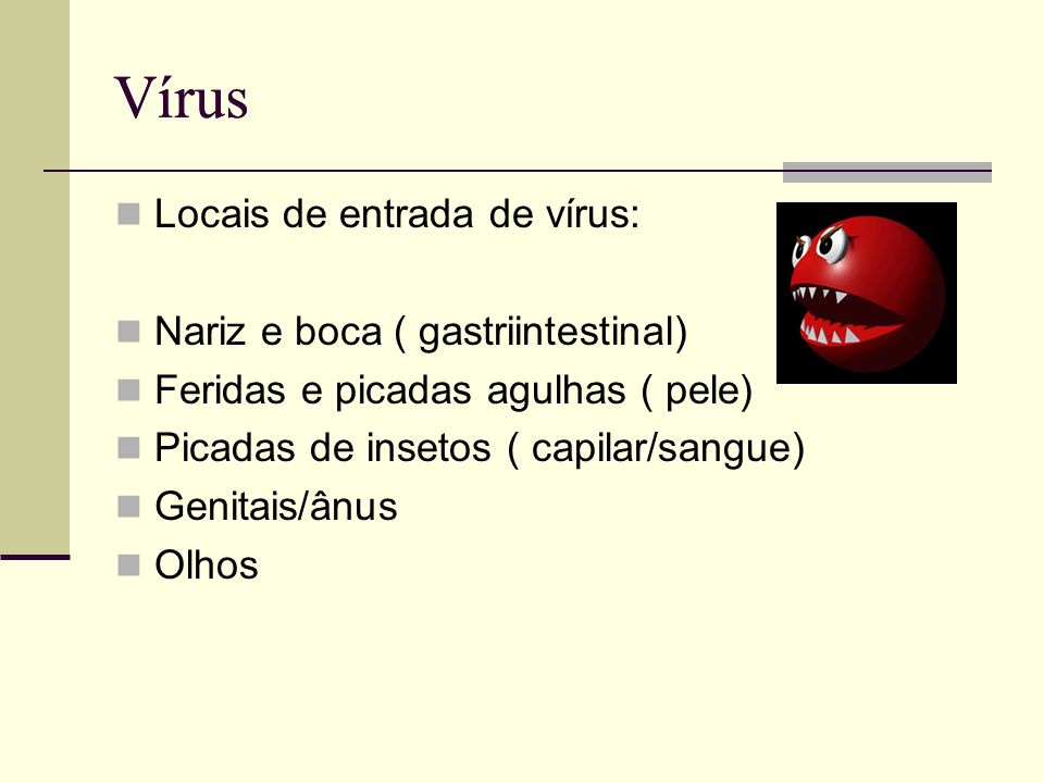 Vírus Vírus Locais de entrada de vírus: