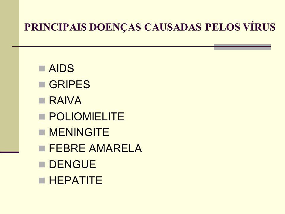 PRINCIPAIS DOENÇAS CAUSADAS PELOS VÍRUS