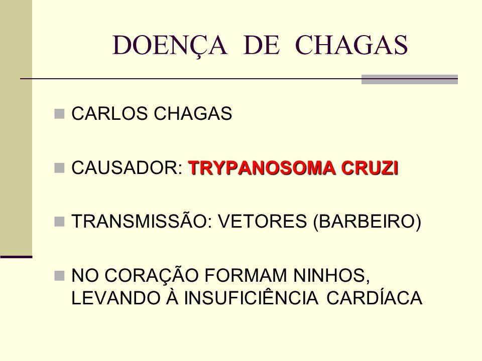 DOENÇA DE CHAGAS CARLOS CHAGAS CAUSADOR: TRYPANOSOMA CRUZI