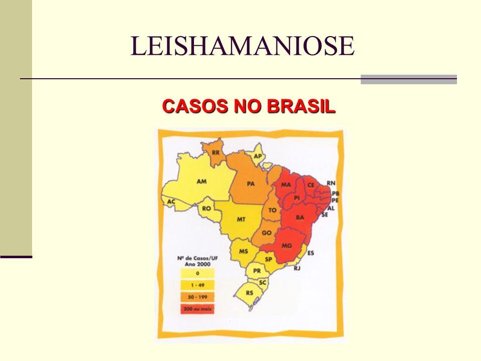 LEISHAMANIOSE CASOS NO BRASIL