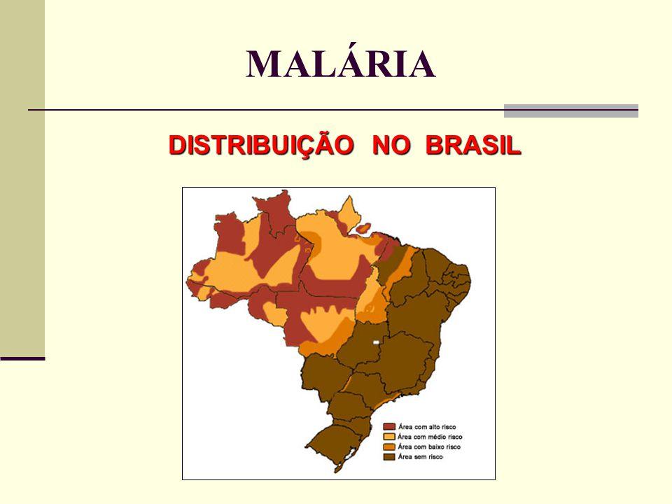 MALÁRIA DISTRIBUIÇÃO NO BRASIL