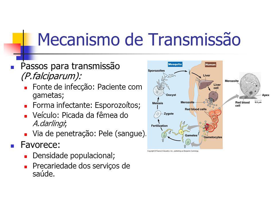 Mecanismo de Transmissão