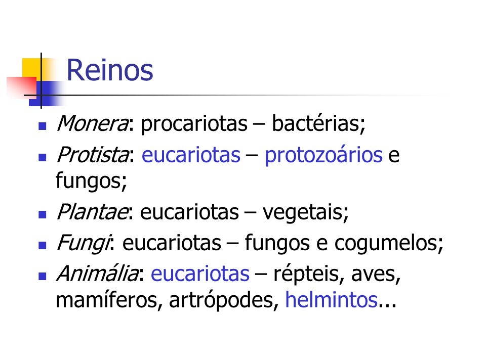 Reinos Monera: procariotas – bactérias;