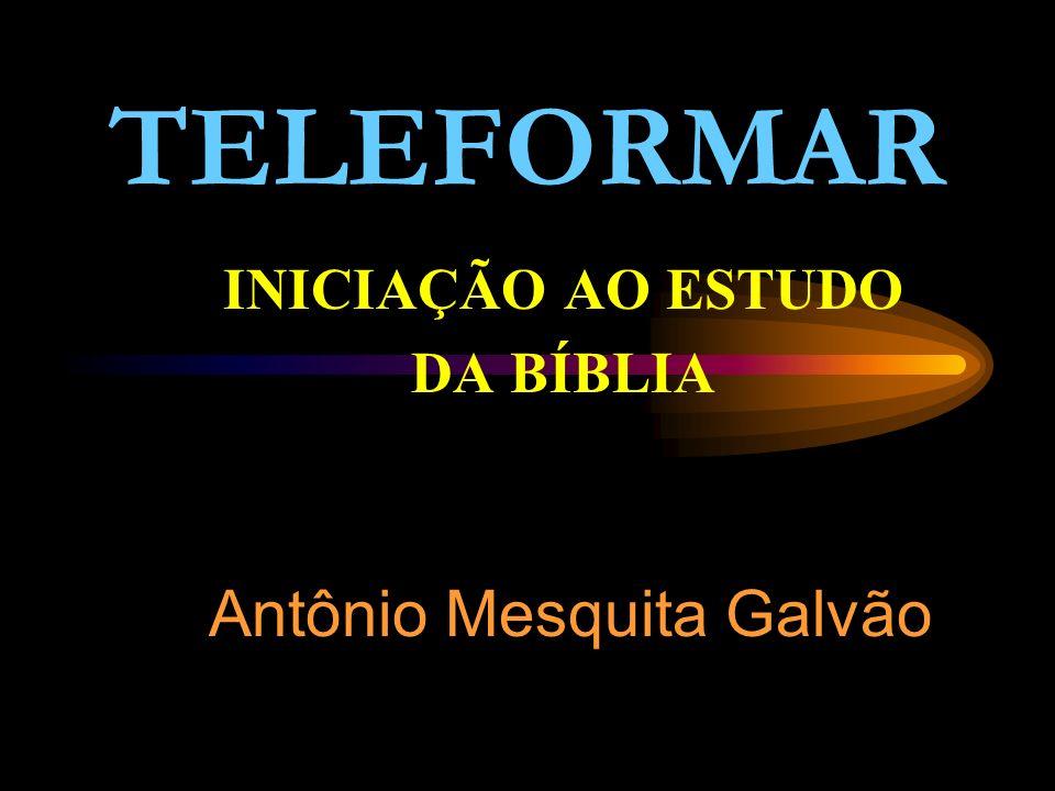 INICIAÇÃO AO ESTUDO DA BÍBLIA Antônio Mesquita Galvão