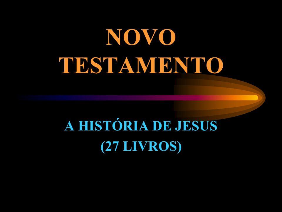 A HISTÓRIA DE JESUS (27 LIVROS)