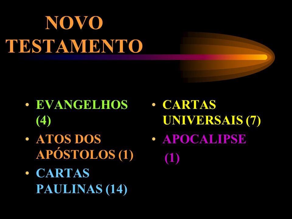 NOVO TESTAMENTO EVANGELHOS (4) ATOS DOS APÓSTOLOS (1)