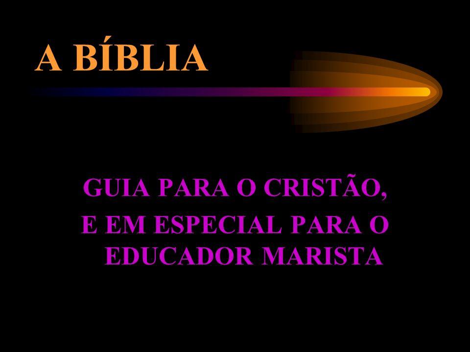 E EM ESPECIAL PARA O EDUCADOR MARISTA