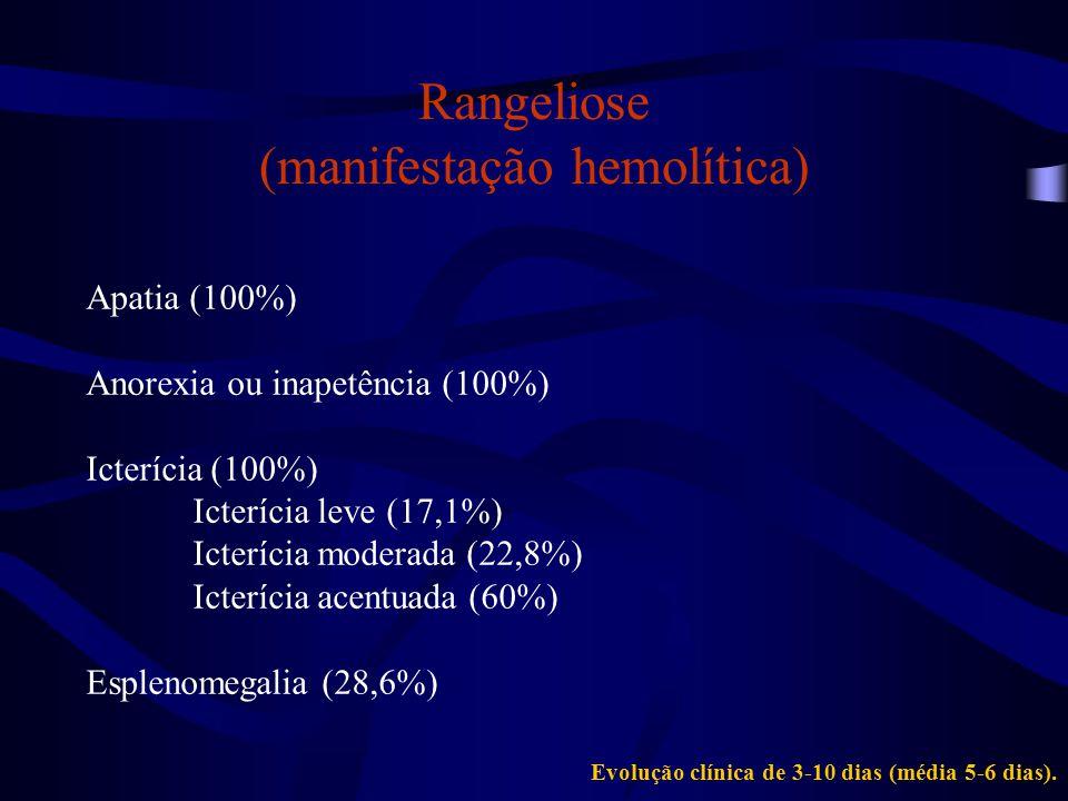 Rangeliose (manifestação hemolítica)