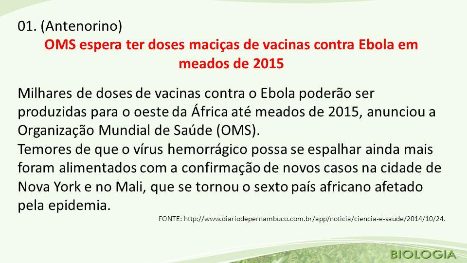 OMS espera ter doses maciças de vacinas contra Ebola em meados de 2015