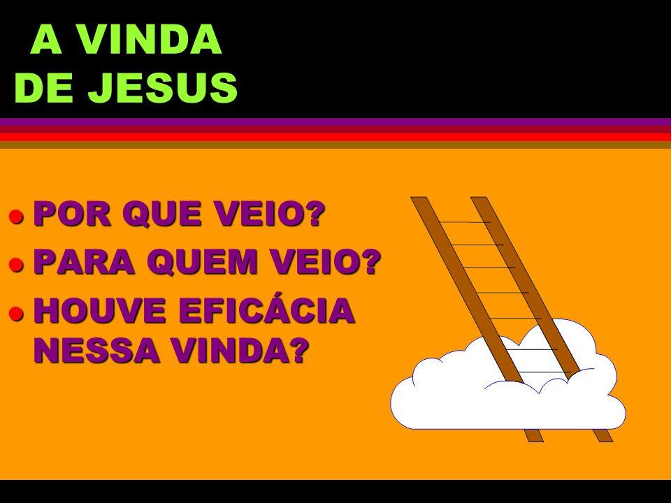 A VINDA DE JESUS POR QUE VEIO PARA QUEM VEIO