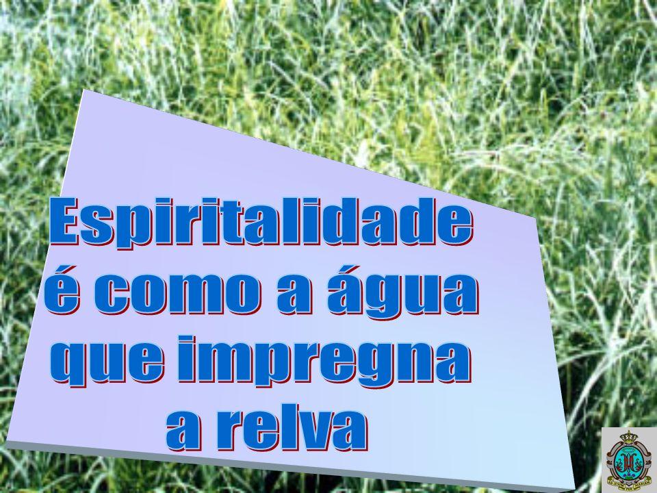 Espiritalidade é como a água que impregna a relva