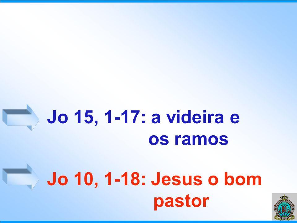 Jo 15, 1-17: a videira e os ramos Jo 10, 1-18: Jesus o bom pastor