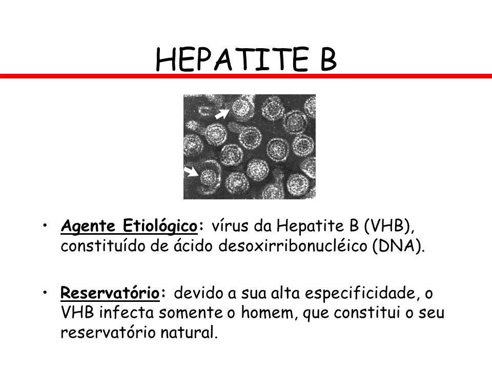HEPATITE B Agente Etiológico: vírus da Hepatite B (VHB), constituído de ácido desoxirribonucléico (DNA).