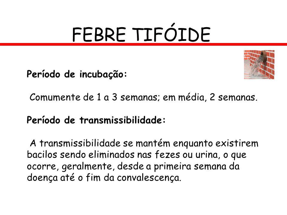 FEBRE TIFÓIDE Período de incubação:
