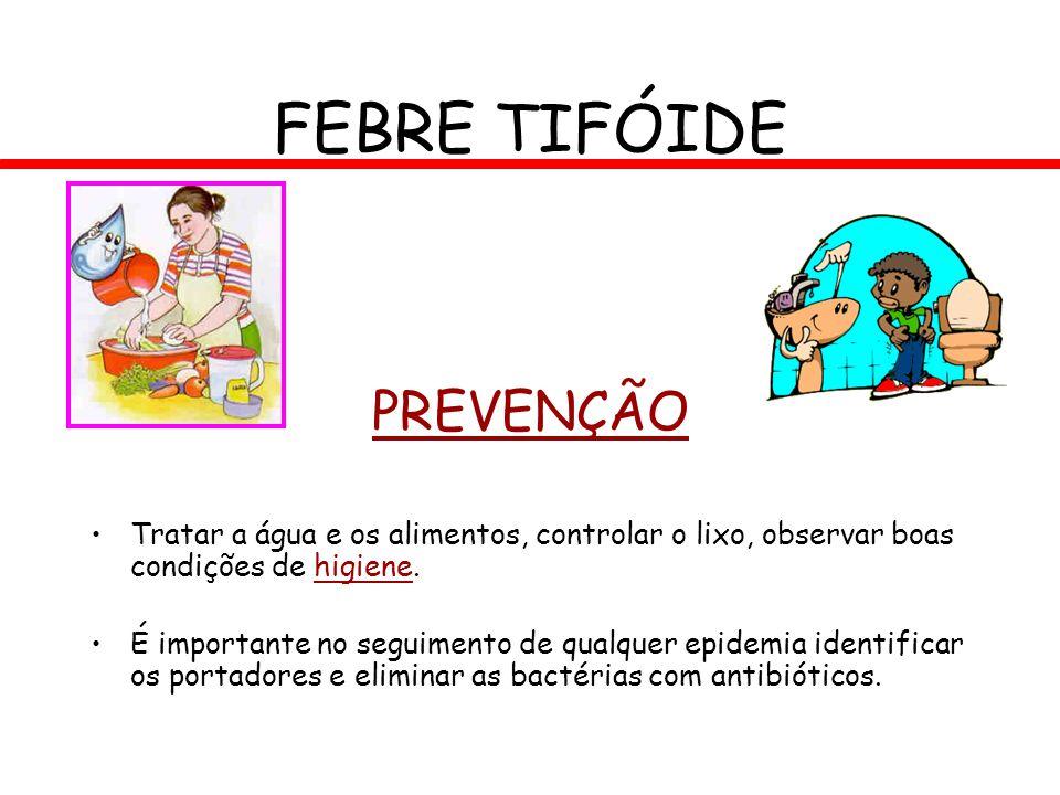 FEBRE TIFÓIDE PREVENÇÃO