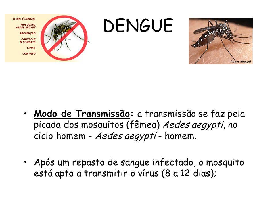 DENGUE Modo de Transmissão: a transmissão se faz pela picada dos mosquitos (fêmea) Aedes aegypti, no ciclo homem - Aedes aegypti - homem.