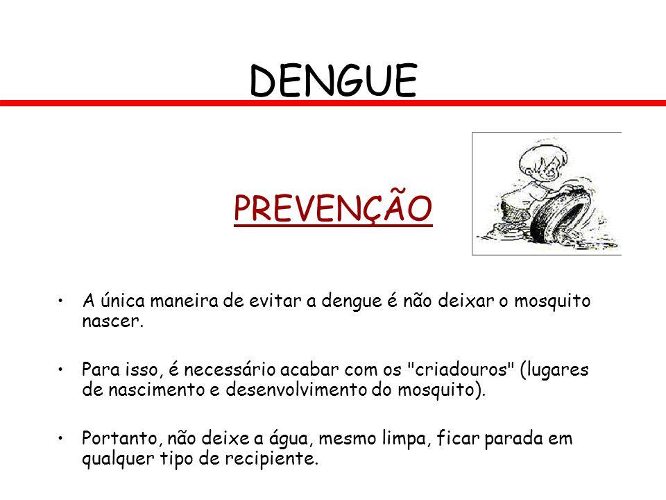DENGUE PREVENÇÃO. A única maneira de evitar a dengue é não deixar o mosquito nascer.