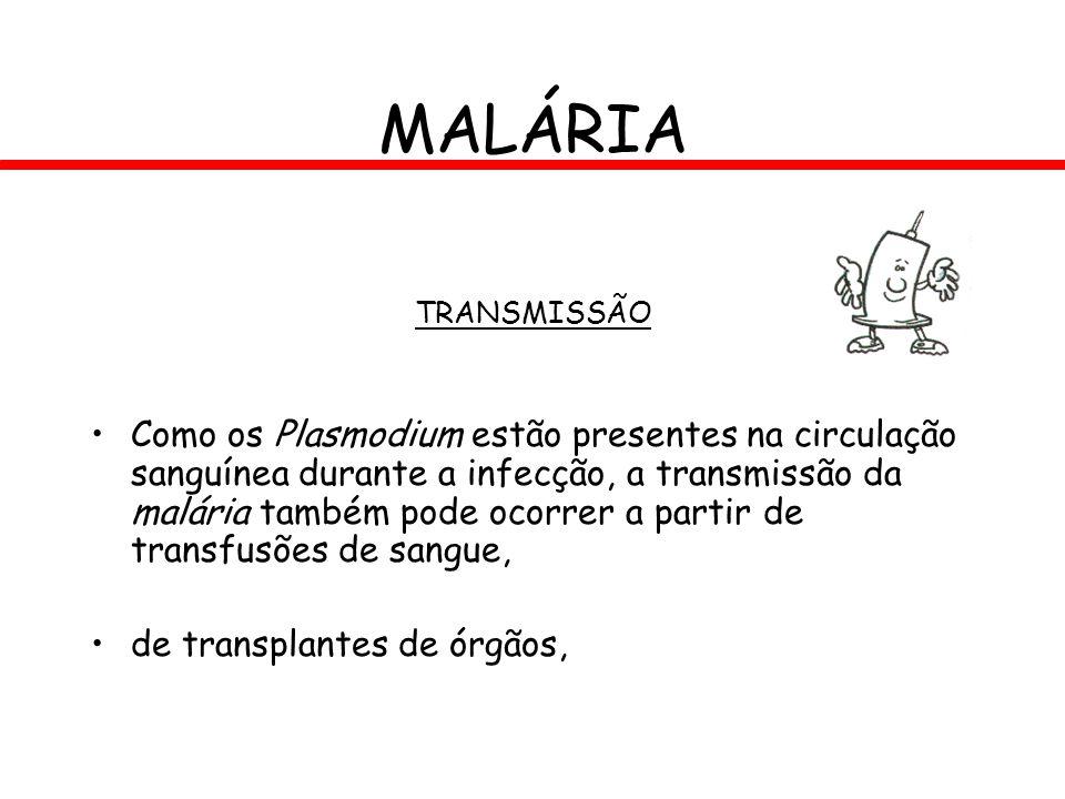 MALÁRIA TRANSMISSÃO.