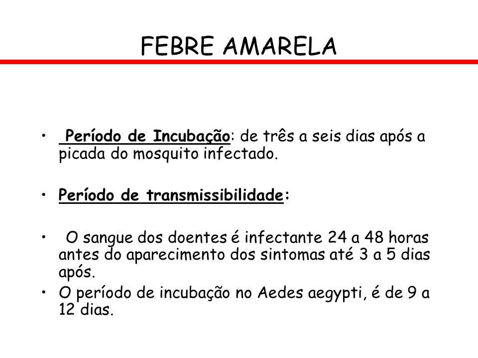 FEBRE AMARELA Período de Incubação: de três a seis dias após a picada do mosquito infectado. Período de transmissibilidade: