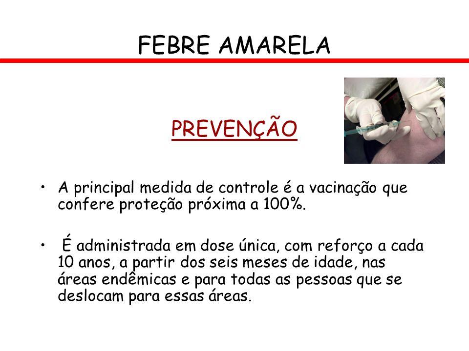FEBRE AMARELA PREVENÇÃO