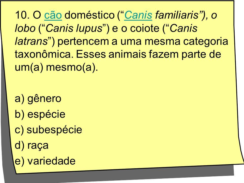 10. O cão doméstico ( Canis familiaris ), o lobo ( Canis lupus ) e o coiote ( Canis latrans ) pertencem a uma mesma categoria taxonômica. Esses animais fazem parte de um(a) mesmo(a).