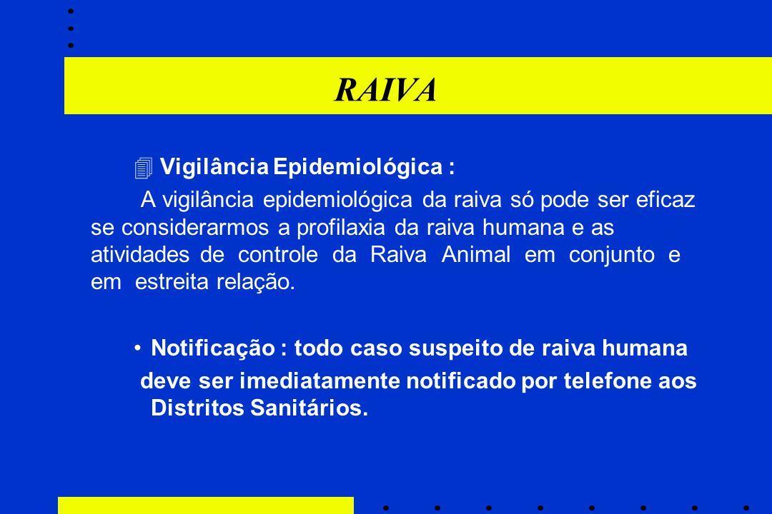 RAIVA  Vigilância Epidemiológica :