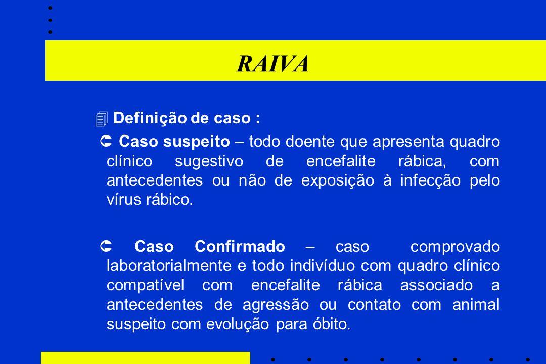 RAIVA  Definição de caso :