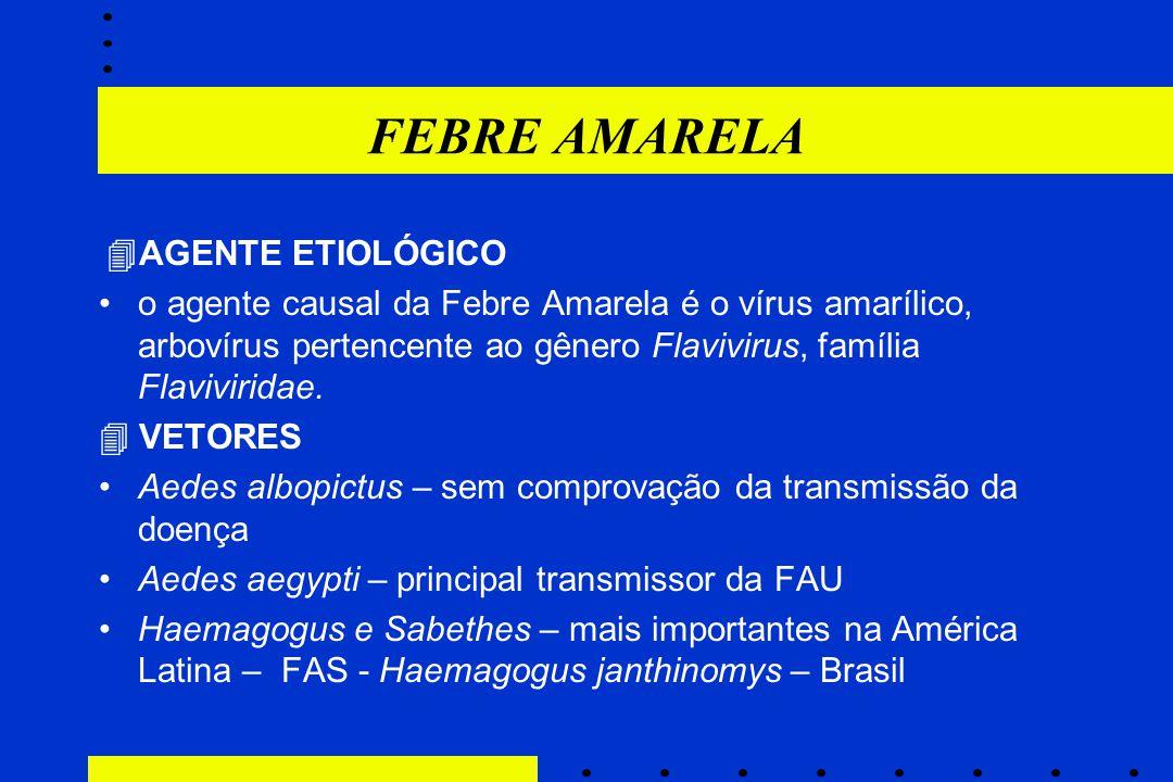 FEBRE AMARELA AGENTE ETIOLÓGICO.