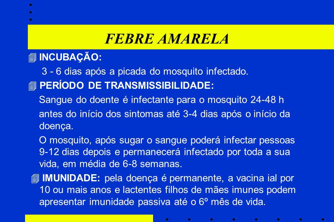 FEBRE AMARELA  INCUBAÇÃO: