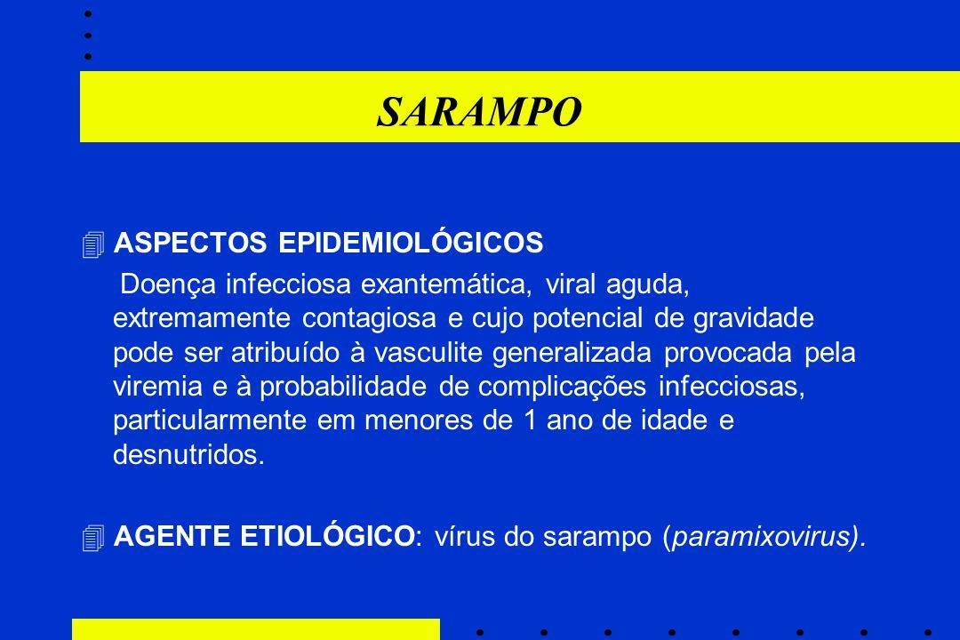 SARAMPO  ASPECTOS EPIDEMIOLÓGICOS
