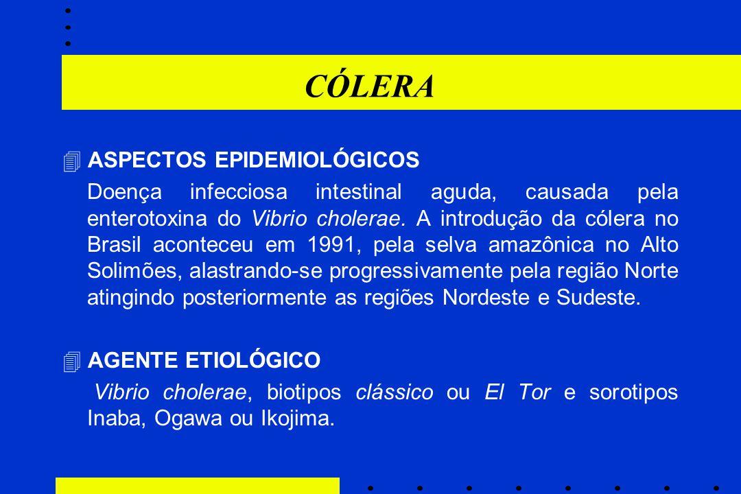 CÓLERA  ASPECTOS EPIDEMIOLÓGICOS