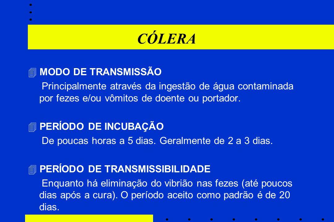 CÓLERA  MODO DE TRANSMISSÃO
