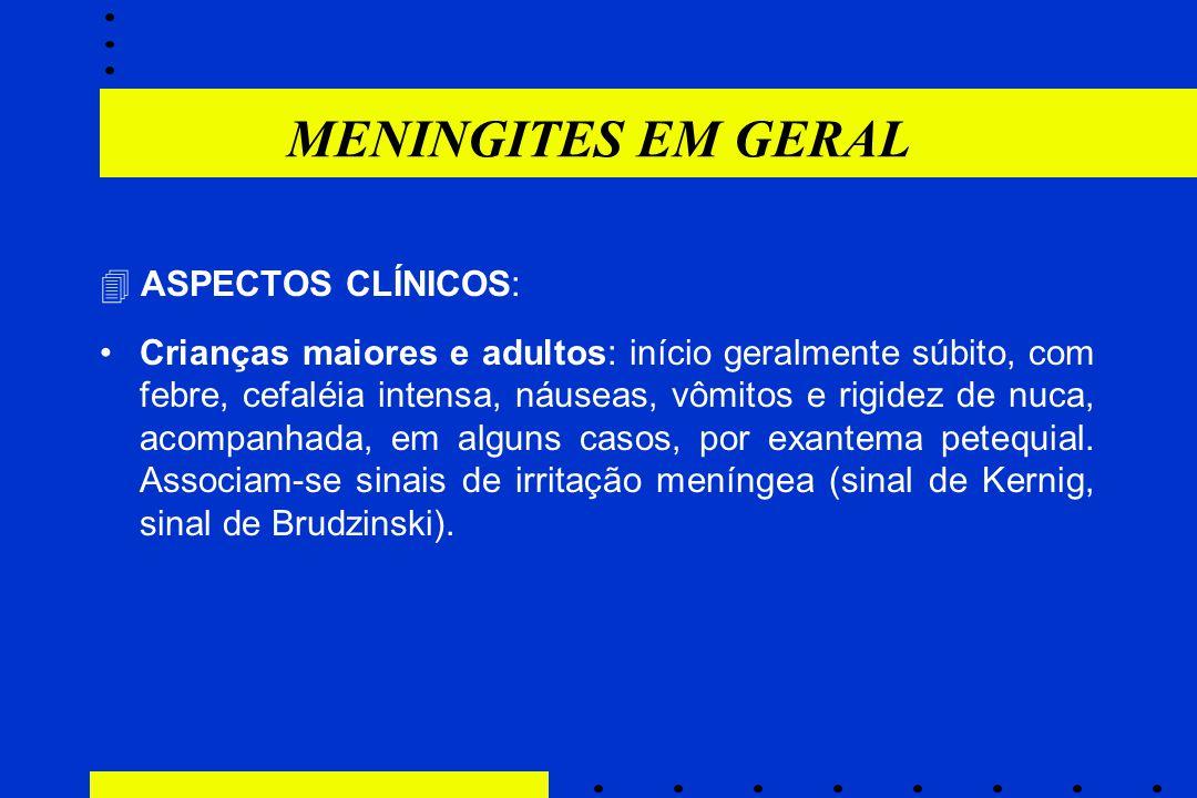 MENINGITES EM GERAL  ASPECTOS CLÍNICOS: