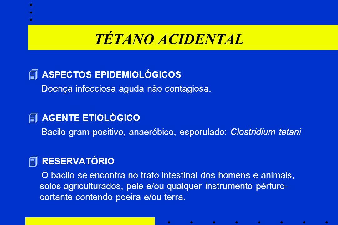 TÉTANO ACIDENTAL  ASPECTOS EPIDEMIOLÓGICOS  AGENTE ETIOLÓGICO