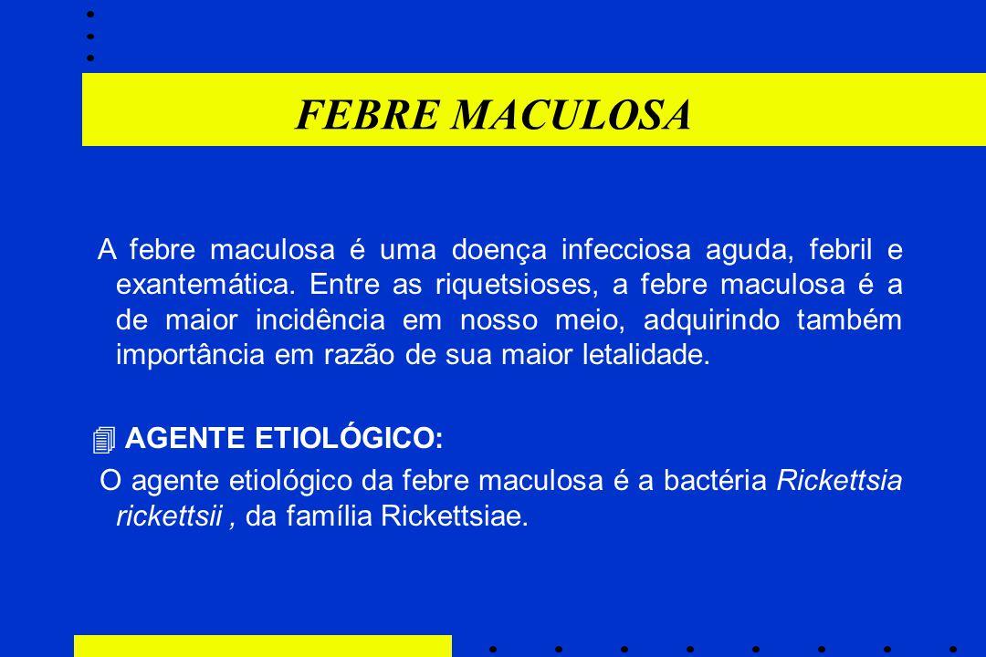 FEBRE MACULOSA  AGENTE ETIOLÓGICO: