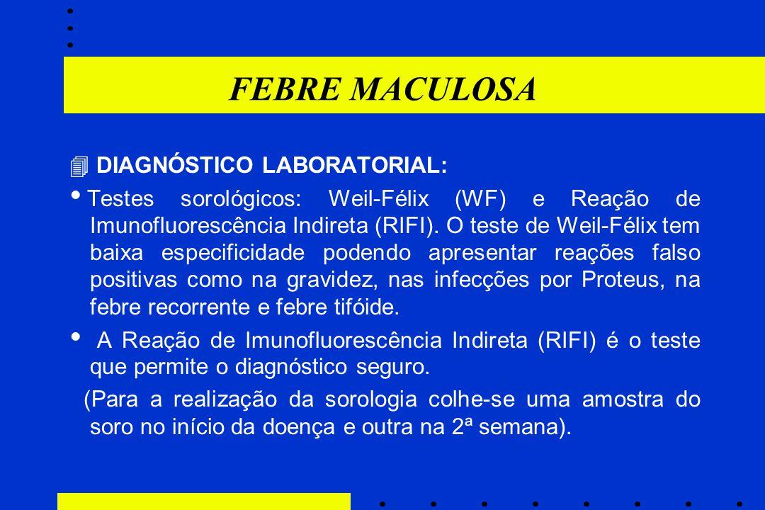 FEBRE MACULOSA  DIAGNÓSTICO LABORATORIAL: