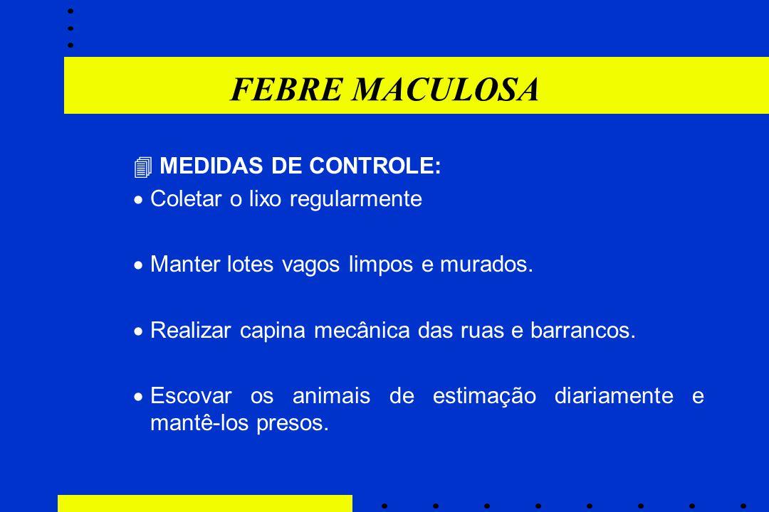 FEBRE MACULOSA  MEDIDAS DE CONTROLE: Coletar o lixo regularmente