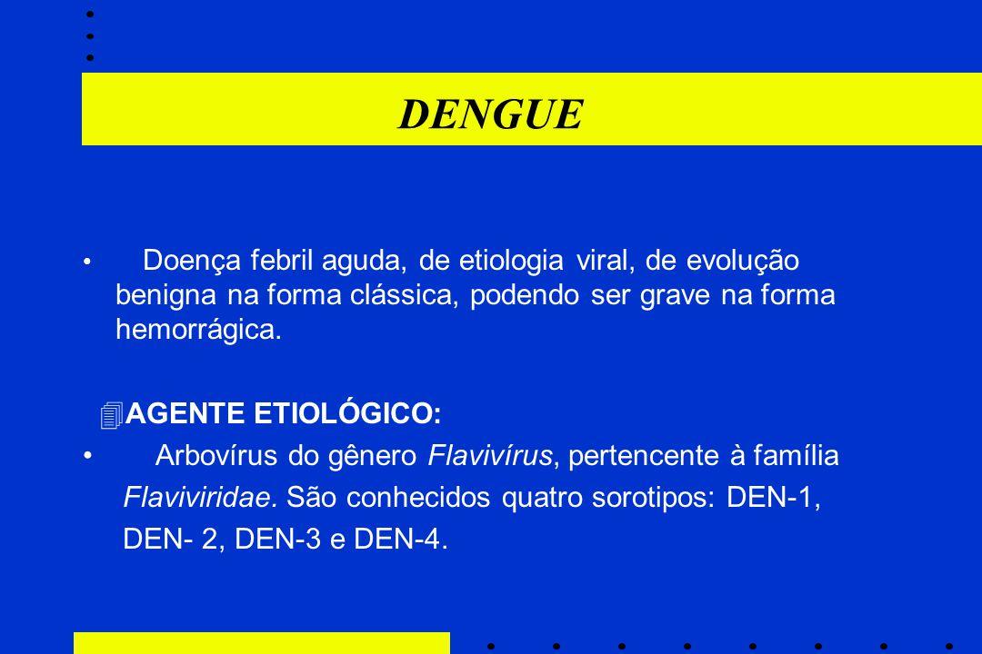DENGUE AGENTE ETIOLÓGICO: