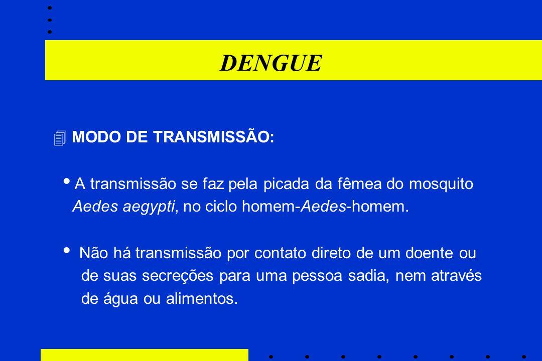 DENGUE A transmissão se faz pela picada da fêmea do mosquito