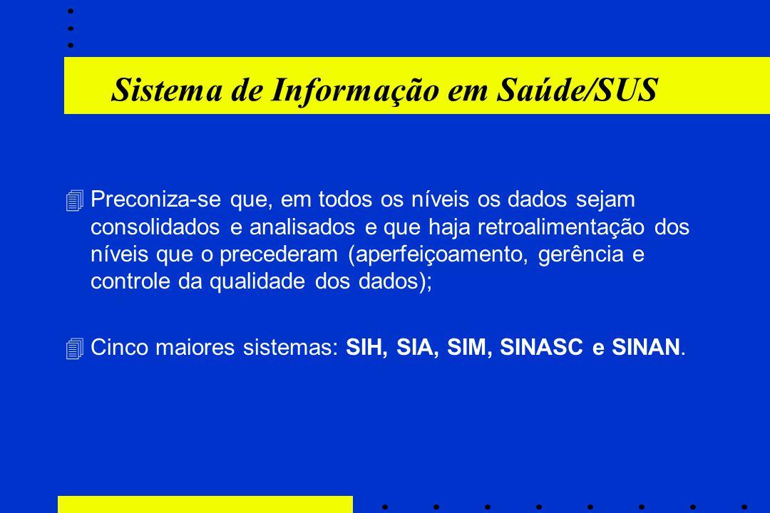 Sistema de Informação em Saúde/SUS