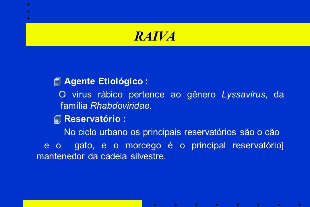 RAIVA  Agente Etiológico :