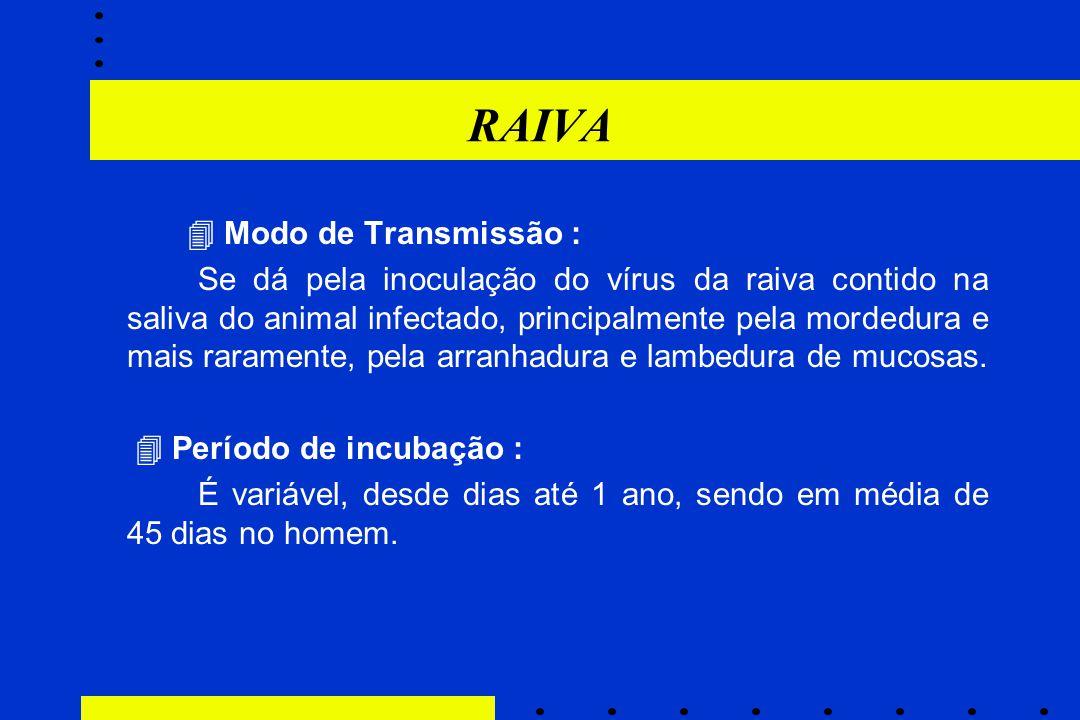 RAIVA  Modo de Transmissão :