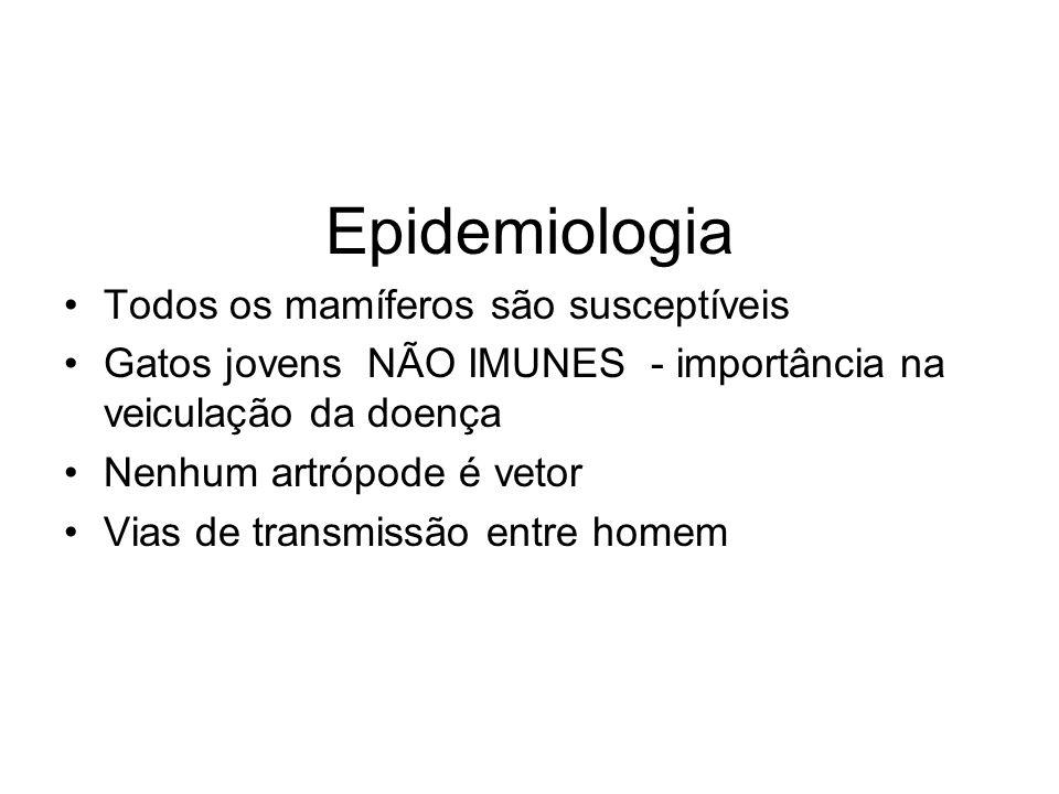 Epidemiologia Todos os mamíferos são susceptíveis