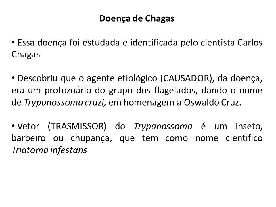 Doença de Chagas Essa doença foi estudada e identificada pelo cientista Carlos Chagas.