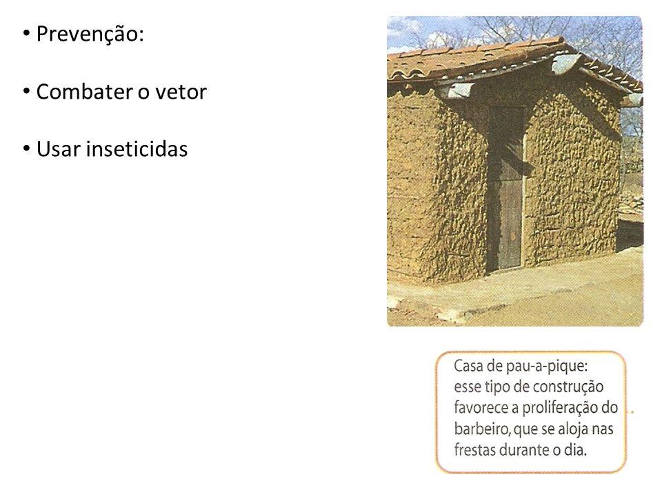 Prevenção: Combater o vetor Usar inseticidas
