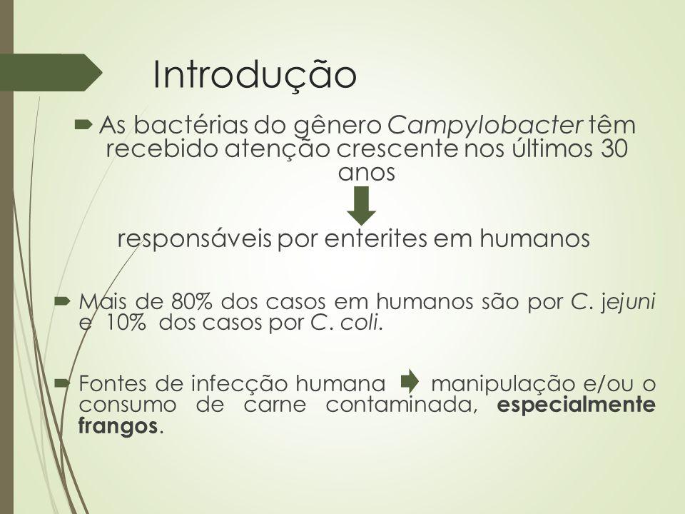 responsáveis por enterites em humanos